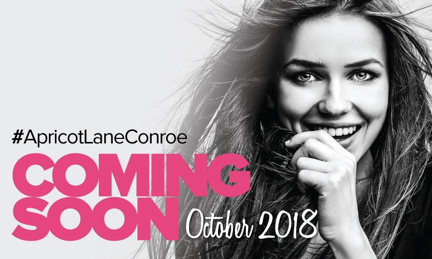 Coming Soon Slide Model Conroe 2018